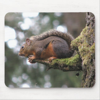 Chipmunk on a Perch Mouse Pad