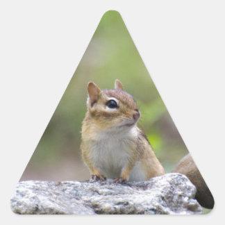 Chipmunk on a rock triangle sticker