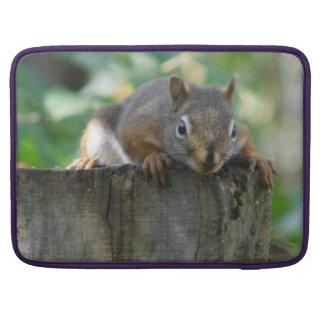 Chipmunk On Fencepost Sleeve For MacBooks