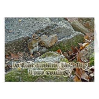 Chipmunk on Rock Birthday Card