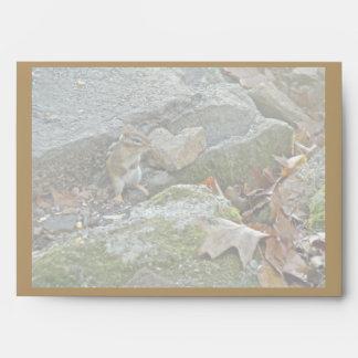 Chipmunk on Rock Items Envelope