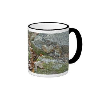 Chipmunk on Rock Items Mugs
