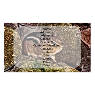 Chipmunk on Rocks Painting Business Card Templates