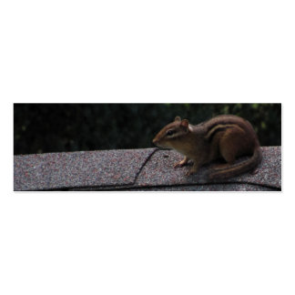 Chipmunk on the Roof Business Cards