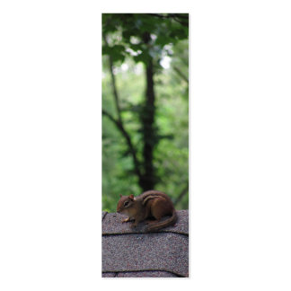 Chipmunk on the Roof Business Card