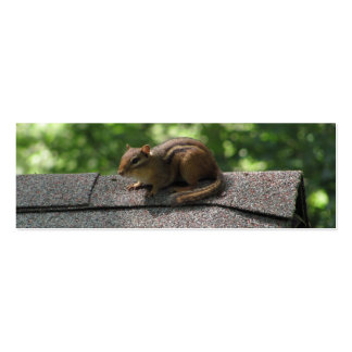 Chipmunk on the Roof Business Card Templates