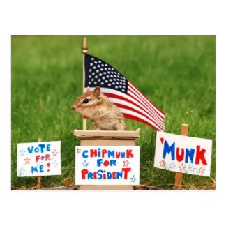 Chipmunk para presidente Postcard Tarjeta Postal