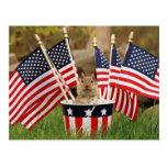 Chipmunk patriótico postal