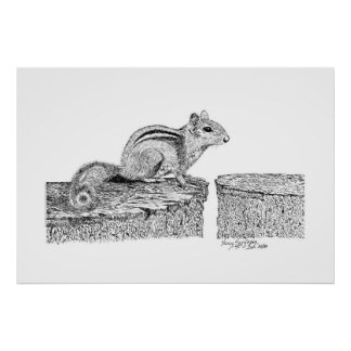 Chipmunk Pen and Ink Drawing Poster