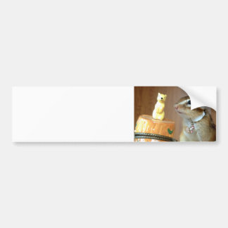 Chipmunk photo (13) bumper sticker
