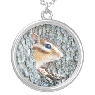 Chipmunk photo (17-4) round pendant necklace
