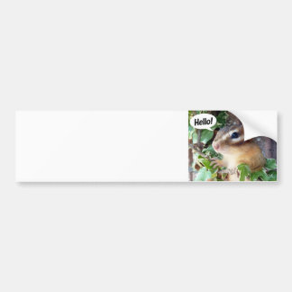 Chipmunk photo (20-4) bumper sticker