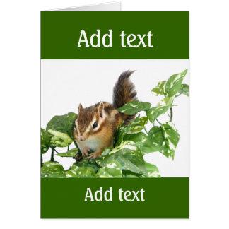 Chipmunk photo (25) card