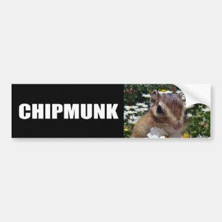 Chipmunk photo (30-12) bumper sticker