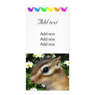 Chipmunk photo (30-12) card