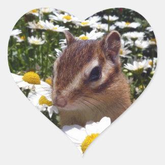 Chipmunk photo (30-12) heart sticker