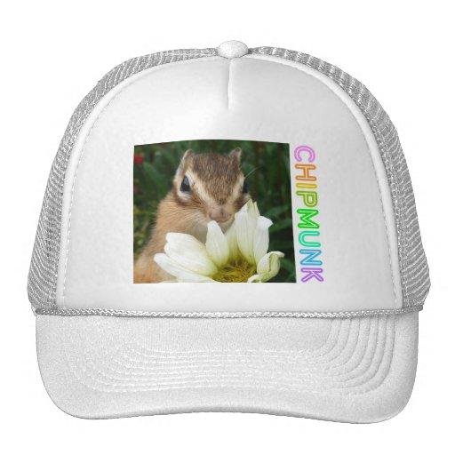 Chipmunk photo (30-19) trucker hat