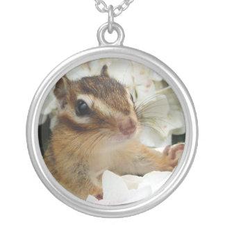 Chipmunk photo (30-21) round pendant necklace