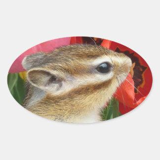 Chipmunk photo (30) oval sticker