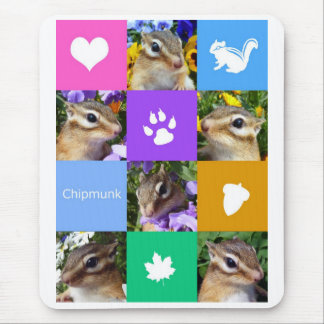 Chipmunk photo (32) mouse pad