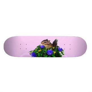 Chipmunk photo (4) type1 skate board deck