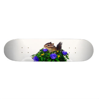 Chipmunk photo (4) type1 skateboards