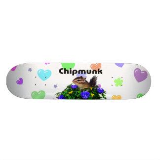 Chipmunk photo (4) type1 skate board decks