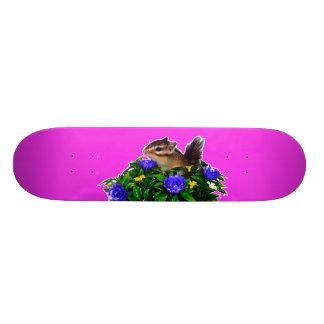 Chipmunk photo (4) type1 skate board