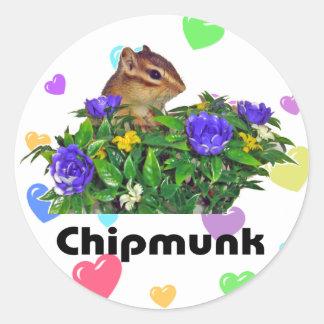 Chipmunk photo (4) type2 classic round sticker