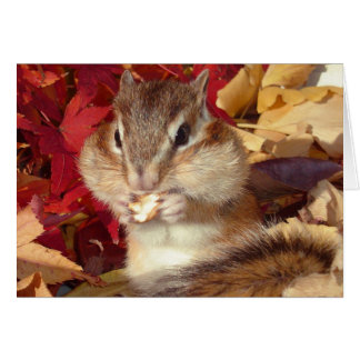 Chipmunk (photo) and Autumn Card