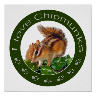 Chipmunk photo poster