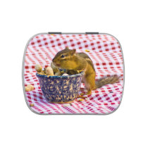 Chipmunk Picnic Jelly Belly Tin