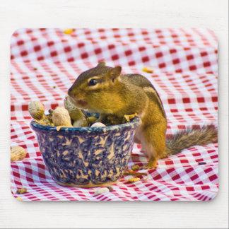 Chipmunk Picnic Mouse Pad