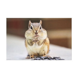 Chipmunk Picture Gallery Wrapped Canvas