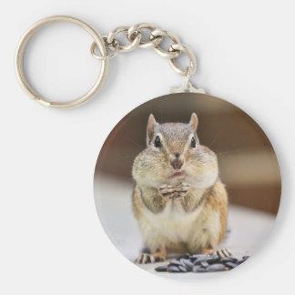 Chipmunk Picture Keychains