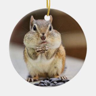 Chipmunk Picture Ornament