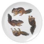 Chipmunk, placa plato para fiesta