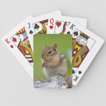 Chipmunk Playing Cards