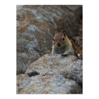 Chipmunk Playing Hide And Seek 6.5x8.75 Paper Invitation Card