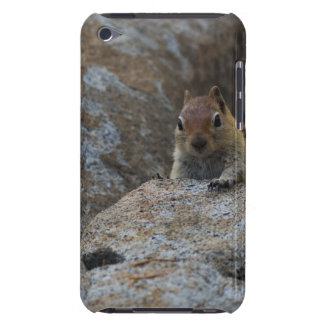 Chipmunk Playing Hide And Seek Case-Mate iPod Touch Case