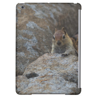 Chipmunk Playing Hide And Seek Cover For iPad Air