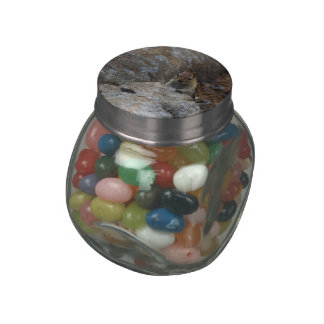Chipmunk Playing Hide And Seek Glass Candy Jar