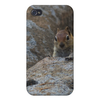 Chipmunk Playing Hide And Seek iPhone 4 Cases