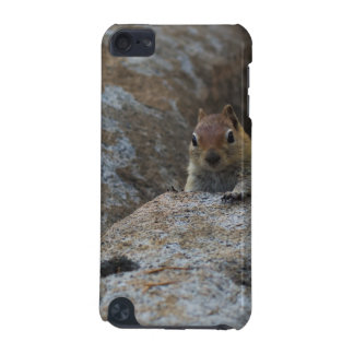 Chipmunk Playing Hide And Seek iPod Touch 5G Case