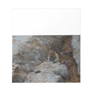 Chipmunk Playing Hide And Seek Note Pad