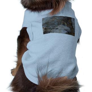 Chipmunk Playing Hide And Seek Shirt