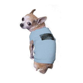 Chipmunk Playing Hide And Seek T-Shirt