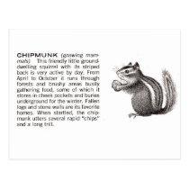 chipmunk postcard