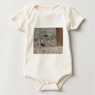 Chipmunk que alimenta en la tierra body para bebé