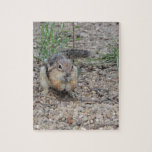 Chipmunk que alimenta en la tierra puzzles